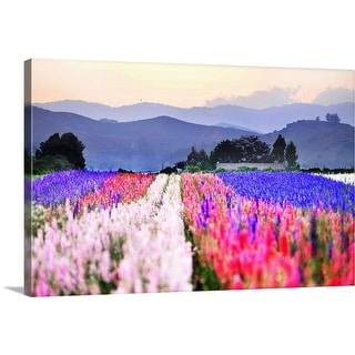 """""""Close up of flowers tulips in rows in fields with mountains."""" Canvas Wall Art"""