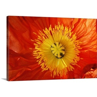 Premium Thick-Wrap Canvas entitled Close up of red and yellow flower
