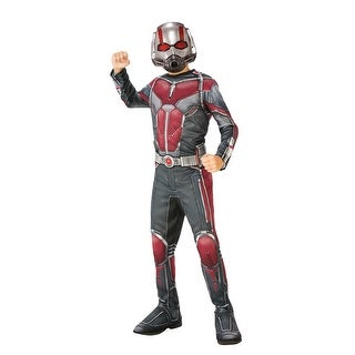 Boys Ant-Man and the Wasp Superhero Costume