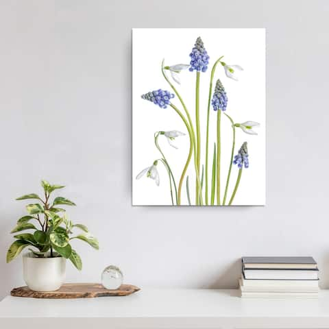 Muscari and Galanthus' Floral Wrapped Canvas Wall Art