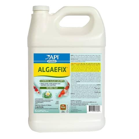 API 169C Algaefix Pond Algae Growth Control, 1 Gallon