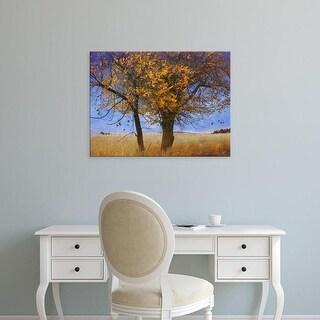 Easy Art Prints Chris Vest's 'Yellow Elm' Premium Canvas Art