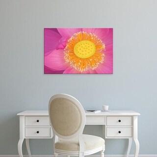 Easy Art Prints Joanne Wells's 'Center Of Lotus Blossom' Premium Canvas Art