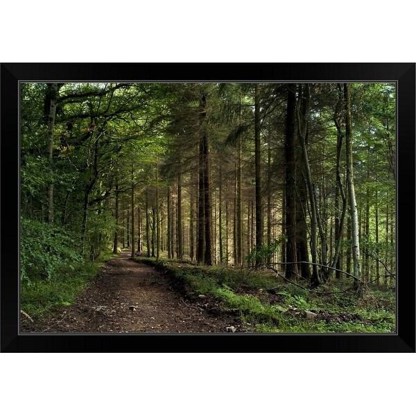 """Pine Forest"" Black Framed Print"
