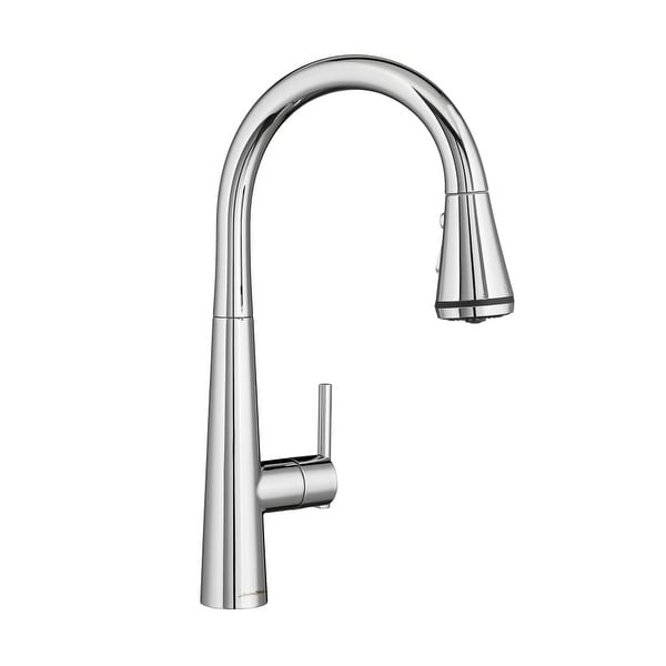 Shop American Standard 4932 3 Edgewater Pull Out Spray Kitchen