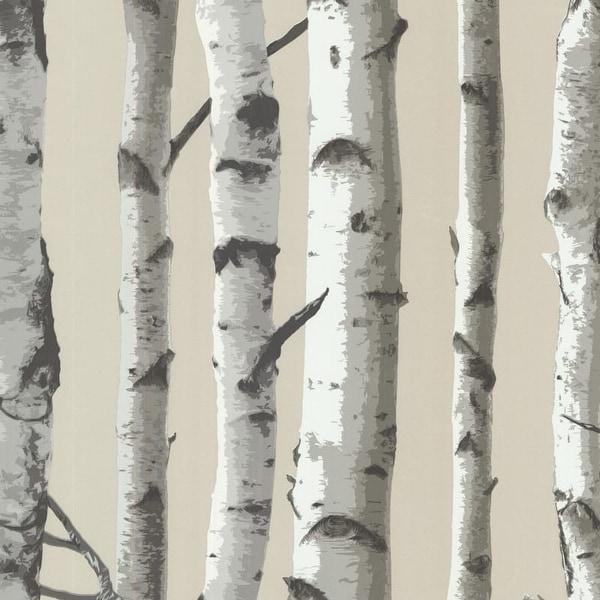 Brewster 2532-20418 Irvin Grey Birch Tree Wallpaper - N/A