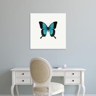 Easy Art Prints PhotoINC Studio's 'Blue Butterfly' Premium Canvas Art