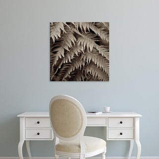 Easy Art Prints Alan Blaustein's 'Florison #51' Premium Canvas Art