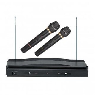 Professional Wireless Dual Microphone System
