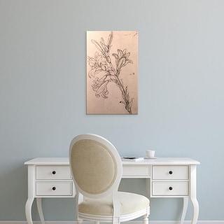 Easy Art Prints Leonardo da Vinci's 'Drawing of lilies' Premium Canvas Art