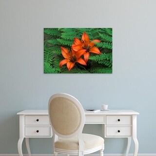 Easy Art Prints Claudia Adams's 'Wood Lilies In Ferns' Premium Canvas Art