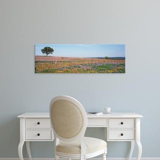 Easy Art Prints Panoramic Image 'Texas Bluebonnets, Indian Paintbrushes In Field, Texas Hill Country, Texas' Canvas Art
