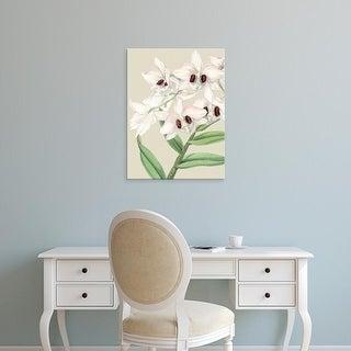 Easy Art Prints Vision Studio's 'Small Orchid Blooms II' Premium Canvas Art