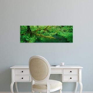 Easy Art Prints Panoramic Image 'Stream in rainforest, Hoh Rainforest, Olympic National Park, Washington' Canvas Art
