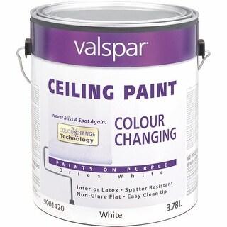 Valspar Color Chng Ceiling Paint