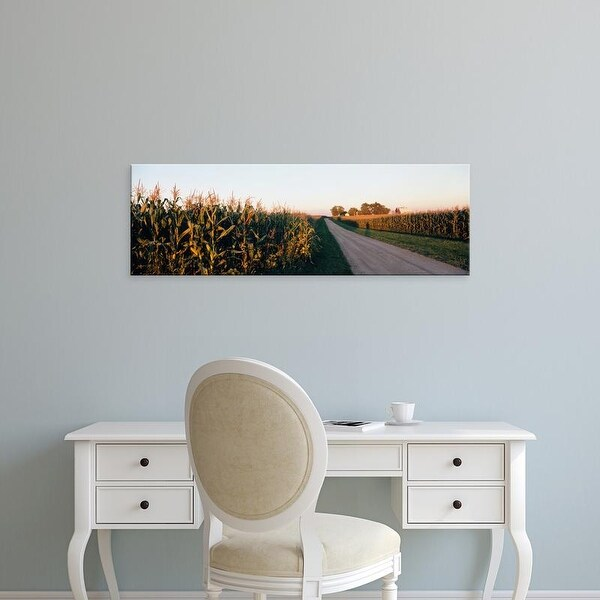 Easy Art Prints Panoramic Images's 'Dirt road passing through fields, Illinois, USA' Premium Canvas Art