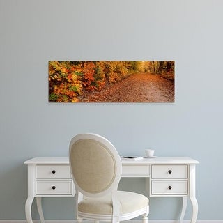 Easy Art Prints Panoramic Image 'Road passing in autumn forest, Traverse City, Grand Traverse, Michigan' Canvas Art