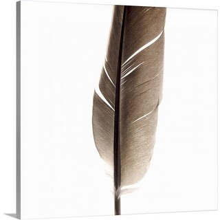 """""""Close-up of a feather"""" Canvas Wall Art"""