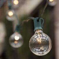 Wintergreen Lighting 70892 25 Bulb 25 Foot Long Incandescent Decorative Holiday String Lights with Green Wire - CLEAR - N/A