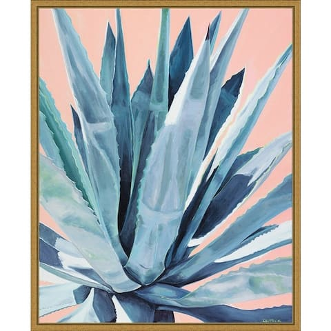 Agave with Coral by Alana Clumeck Framed Canvas Art