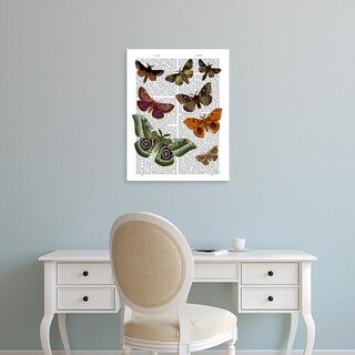 Easy Art Prints Fab Funky's 'Moth Plate 2' Premium Canvas Art