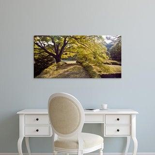 Easy Art Prints Panoramic Images's 'Trees in a garden, Rikugien Garden, Tokyo Prefecture, Japan' Premium Canvas Art