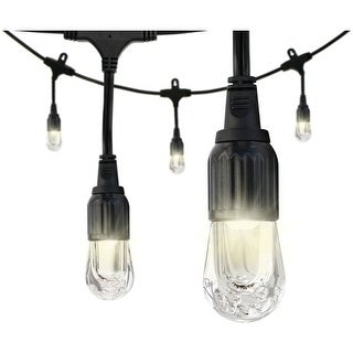 Enbrighten 31662 Cafe Led Lights (24Ft; 12 Acrylic Bulbs)