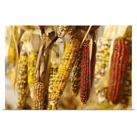 """Ears of corn"" Poster Print"