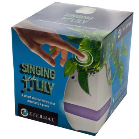 Pack of 2 White and Purple Light Mode Singing Lily Pot - N/A