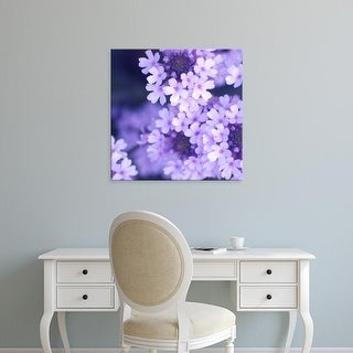 Easy Art Prints PhotoINC Studio's 'Purple Flowers' Premium Canvas Art