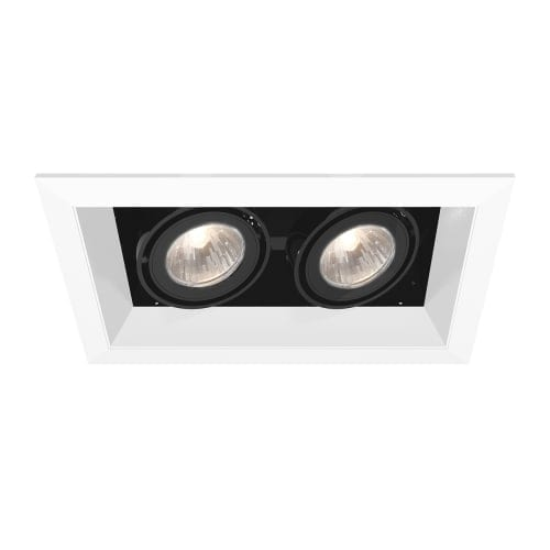 Eurofase lighting te112 mr16 directional 2 light recessed trim