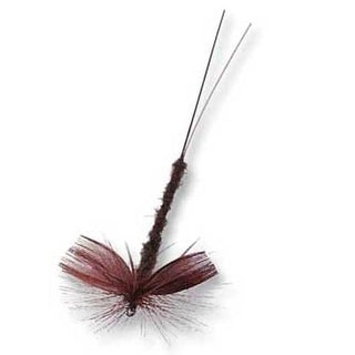 Betts Willow Drake Fly Dark Assorted