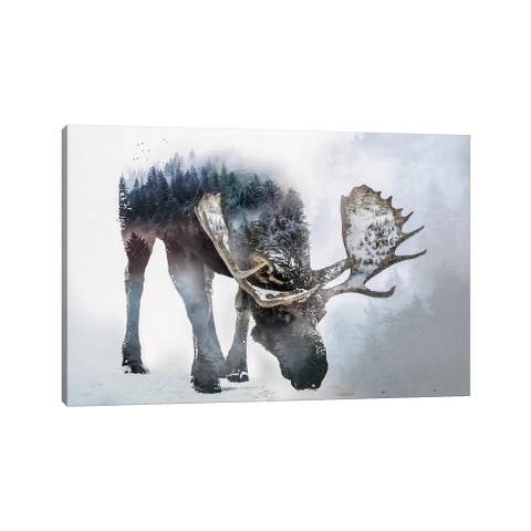 "iCanvas ""Nature Moose"" by Paul Haag Canvas Print"