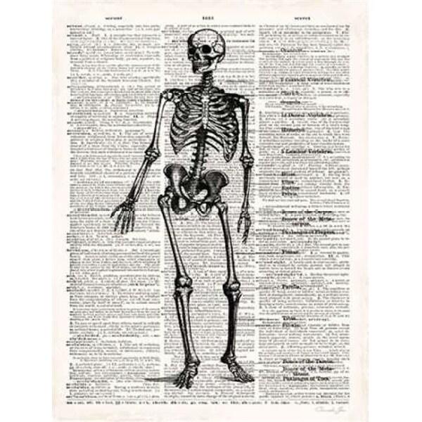 Shop Vintage Anatomy Skeleton Poster Print By Christopher James 9