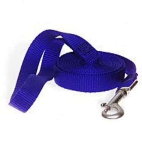 "Aspen Pet 15008 Nylon Pet Leash, 5/8""x4', Blue"