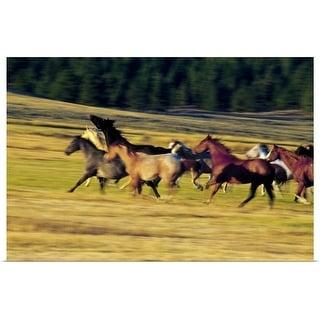 """Herd of horses running, Oregon, united states, "" Poster Print"