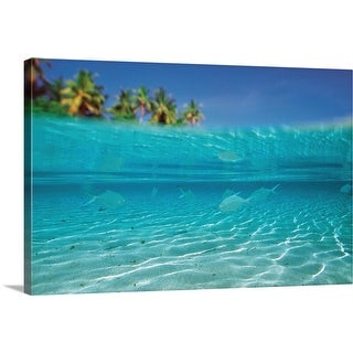 """School of Fish, level view"" Canvas Wall Art"