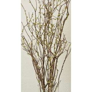 Dried Sweet Huck Branches with Green berries Large 4oz Bunch, About 20 branches per bunch 22-26in tall --  Single Bunch