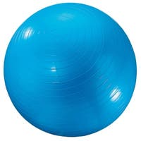 Exercise Ball 24In Blue