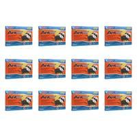 Pic Plasbon Plastic Ant-Killing Systems (12 Packs Of 12)