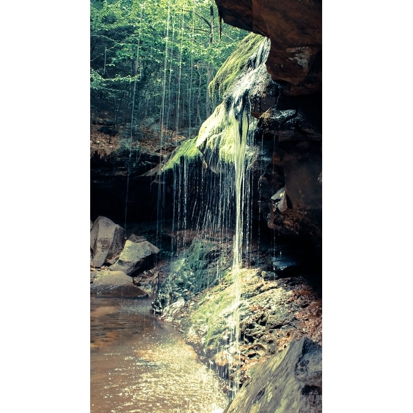 Waterfall And Swamp Canvas Wall Art Photograph