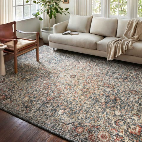 Alexander Home Valeria Distressed Botanical Area Rug