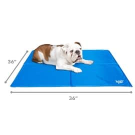 Frontpet Self Cooling Gel Mat Pad EXTRA LARGE for Dogs, Non Toxic (36 INCH X 36INCH) Dog Cooling Mat / Cooling Mat for Dogs|https://ak1.ostkcdn.com/images/products/is/images/direct/c0b1ccd07c51d4dc44f50db2aaf2642af288c7f6/770616/Frontpet-Self-Cooling-Gel-Mat-Pad-EXTRA-LARGE-for-Dogs%2C-Non-Toxic-(36-INCH-X-36INCH)-Dog-Cooling-Mat---Cooling-Mat-for-Dogs_270_270.jpg?impolicy=medium