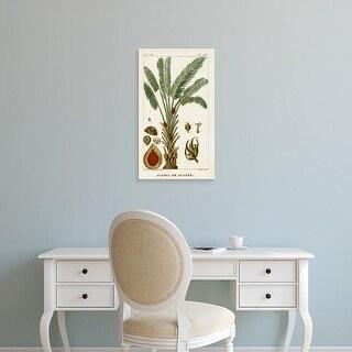 Easy Art Prints Turpin's 'Turpin Exotic Palms VI' Premium Canvas Art