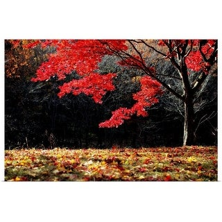 """""""Red tree"""" Poster Print"""