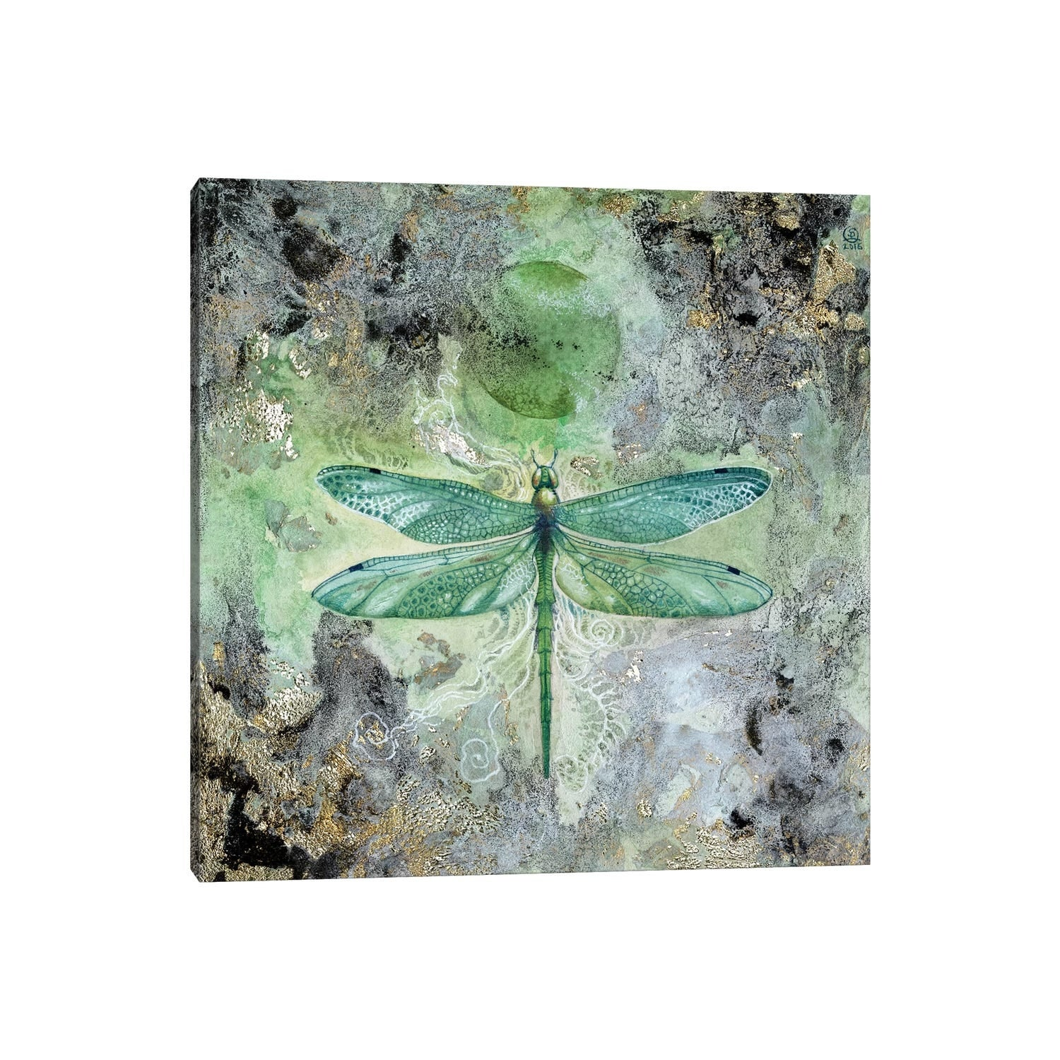 Icanvas Dragonfly V By Stephanie Law Canvas Print On Sale Overstock 26637629
