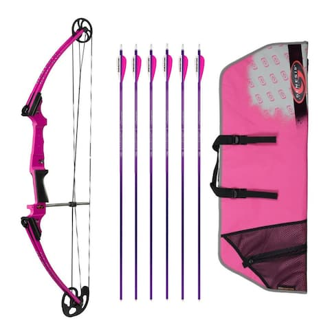 Genesis Archery Original Bow (RH, Purple) with 6 NASP Arrows and Case