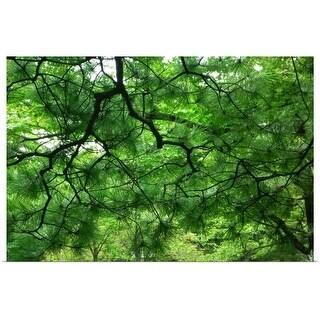 """Tree veins"" Poster Print"