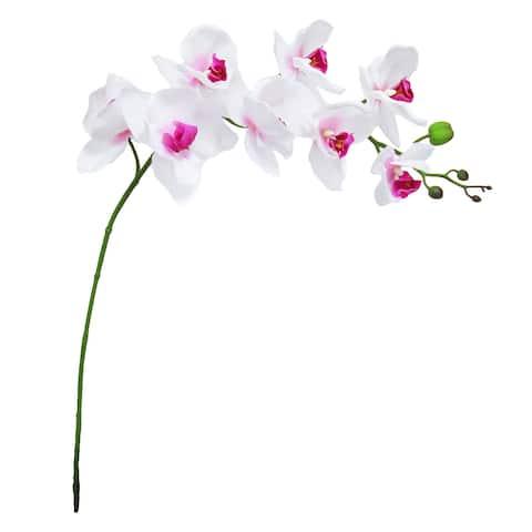 "Set of 3 Phalaenopsis Orchid Flower Stem Tropical Spray 40in - 40"" L x 7.5"" W x 3.5"" DP"