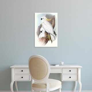 Easy Art Prints John Gould's 'Pastel Parrots V' Premium Canvas Art